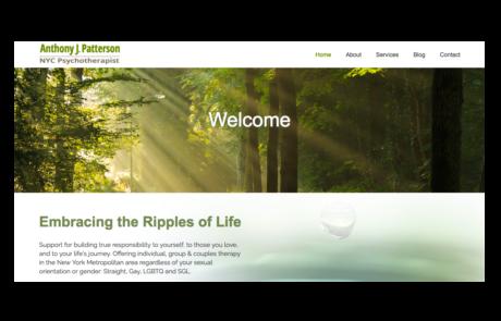 sue seecof web design
